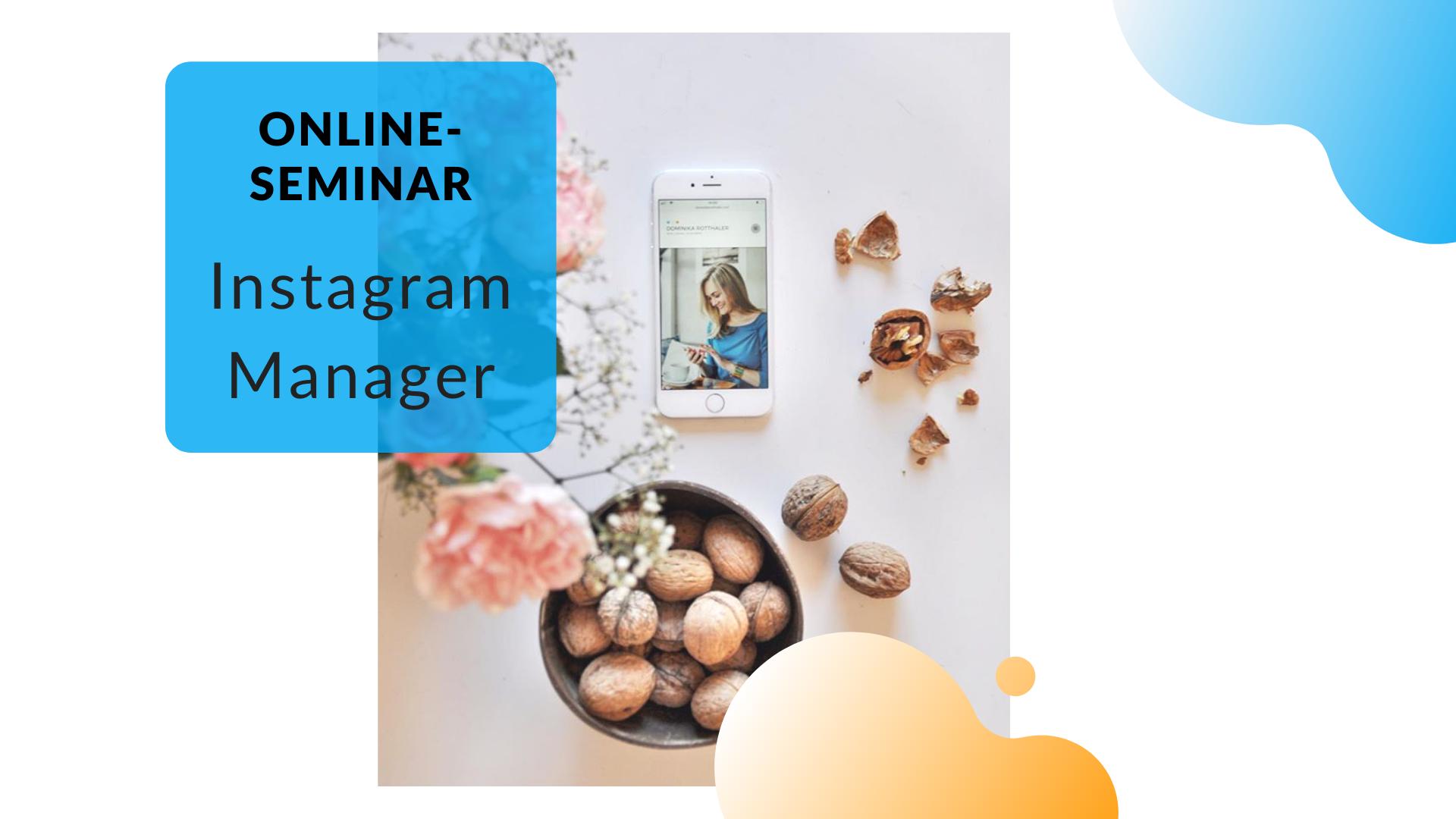 Online-Seminar Instagram Manager